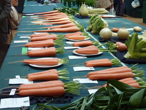 Carrots'