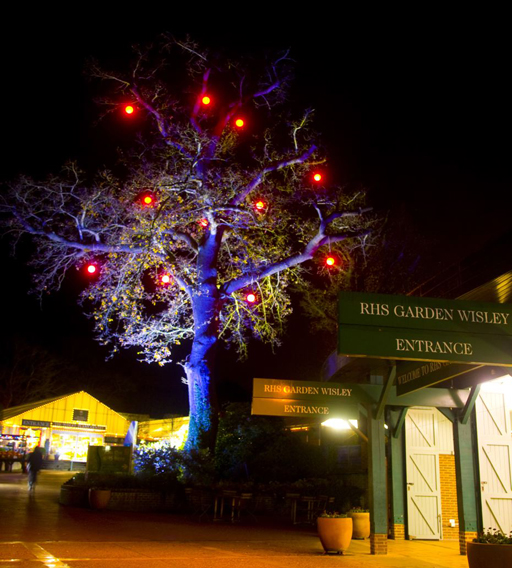 RHS Christmas Events'