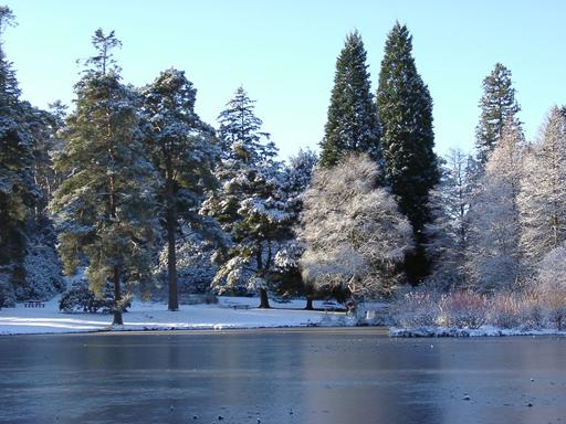 Winter'