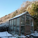 Snowed in greenhouse