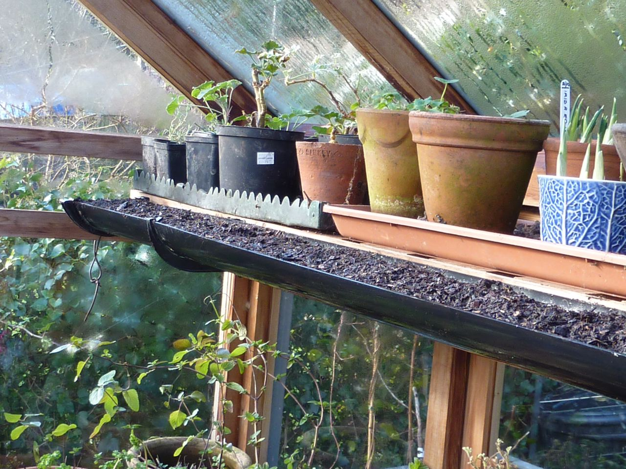 gutter used in greenhouse for planting peas