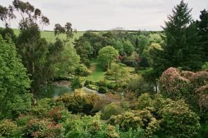 photo of marwood gardens