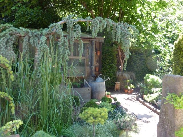 pine-garden