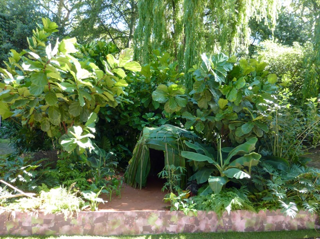 rainforest-garden