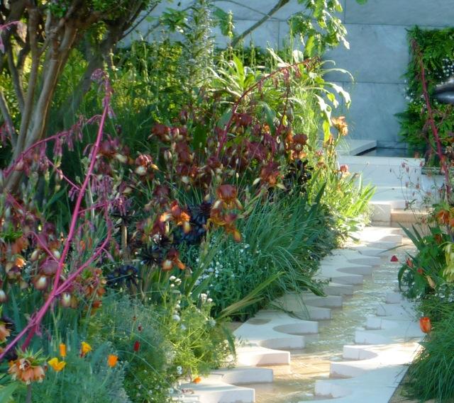 tom-hoblyns-garden1
