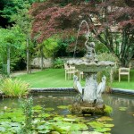 Garden Day at Chideock Manor