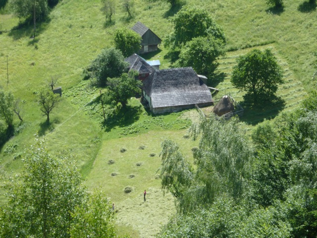 Haymaking in the valley below the guesthouse