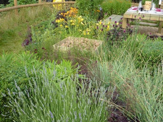 tyrells-garden2