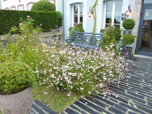Guillaume Pellerin planted the hotel garden