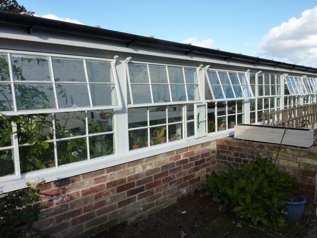greenhouse-windows