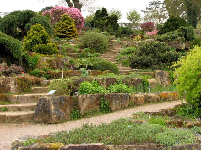 Rock garden steps today