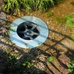 Down the Plughole in the WWF garden