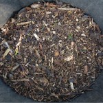 Mulch Away & Keep the Drought at Bay