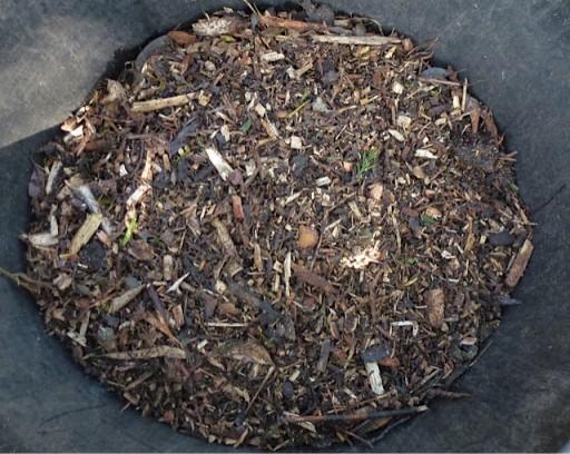large pile of bark mulch