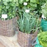 fake-basket-weave-planters