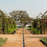 Fantastic-17th-Century-formal-garden-in South-Africa