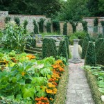 formal box hedging leads eye to centre of garden