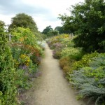 path-leads-into-the-distance-at-Parham