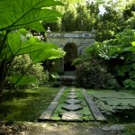 beautiful water garden with stepping stones