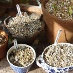 small-pots