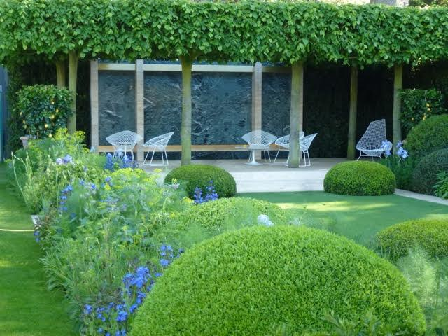 neatly trimmed topiary and open space in this modern garden