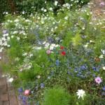 cottage-garden-planting