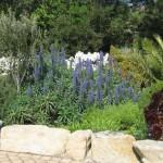 stone-lined-garden-border