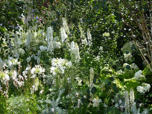 white and silver planting also add to this romantic garden