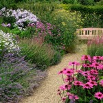 gravel path lined with perennials in cottage garden