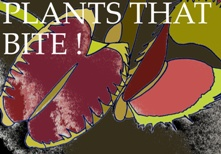 plant-that-bite