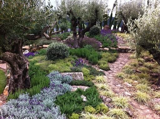 dry garden at malvern spring show 2012