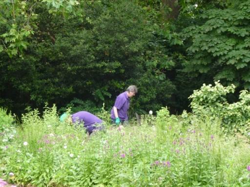 gardeners working in the Jo Malone garden