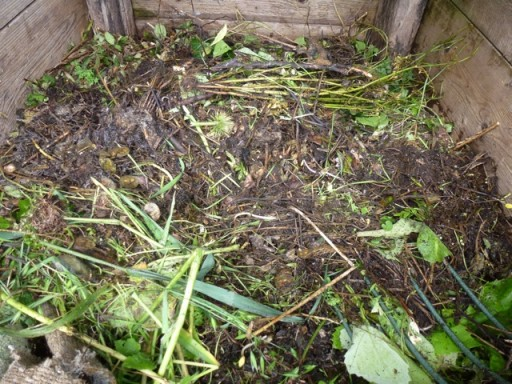 leafmould on compost heap