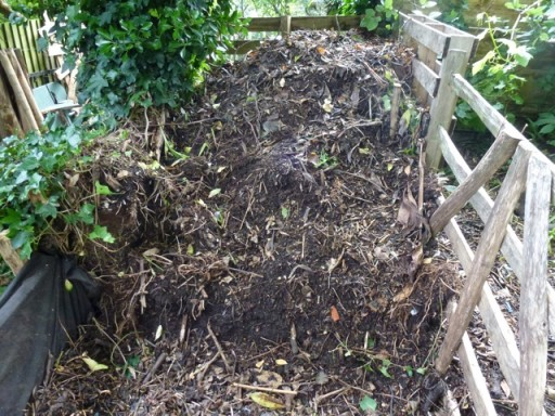 rich black humus on compost heap