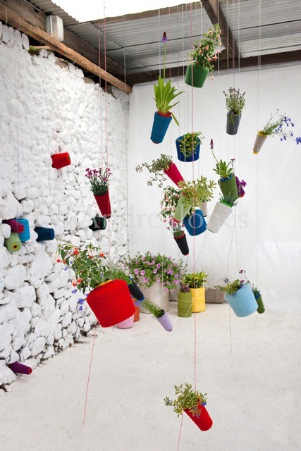 plants hanging from string reels