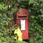 Mr Postman Please Be Kind to Bees