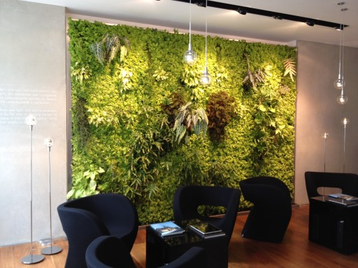 living wall in showroom
