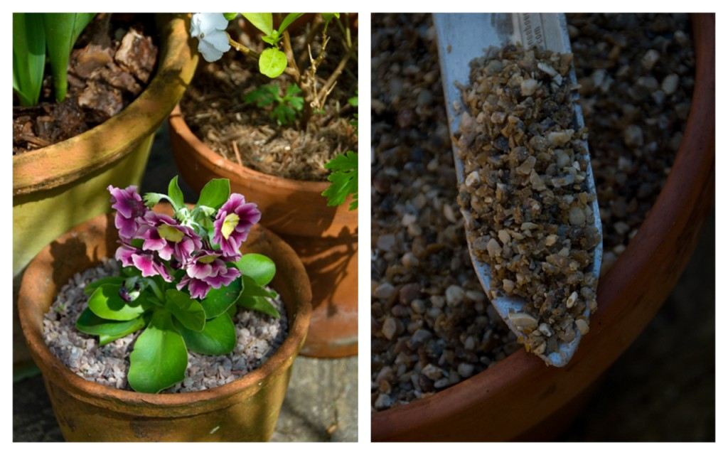 garden pots with gravel mulch