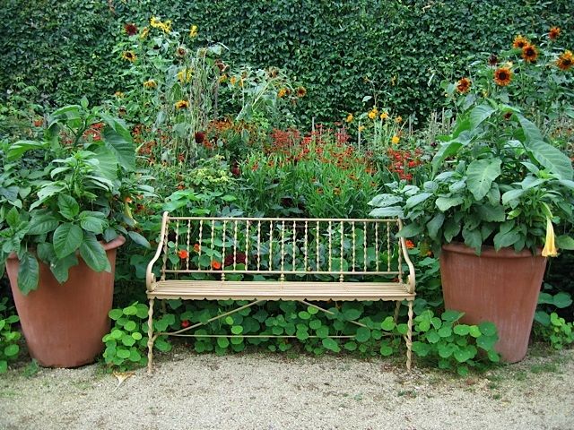 garden bench framed by two large pots