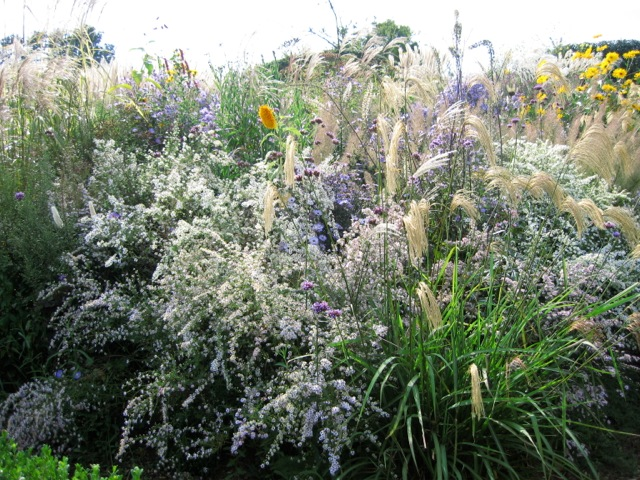 Attractive flower border with grasses