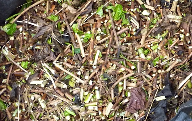 shredded leaves and twigs ready for compost heap
