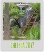 chelsea-2013