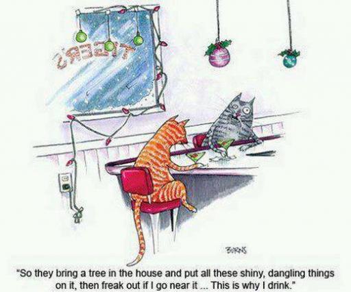 cat at bar cartoon