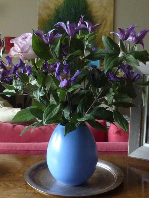 Clematis durandii in blue vase