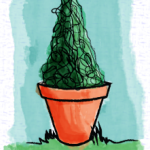 cone topiary in pot