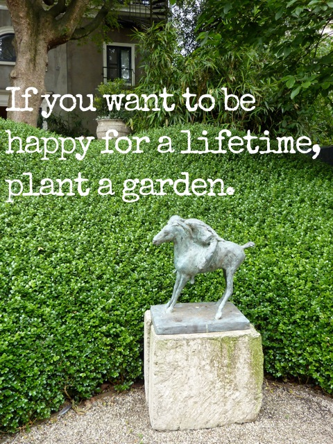 Horticulture quotes funny quotesgram for Gardening is my passion