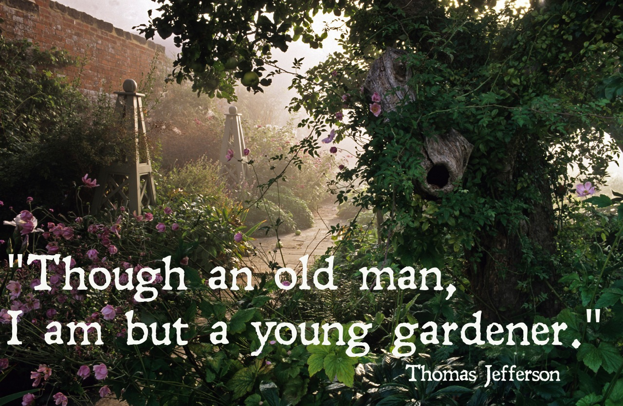 Quotes About Love Quote Garden : gardening quotes