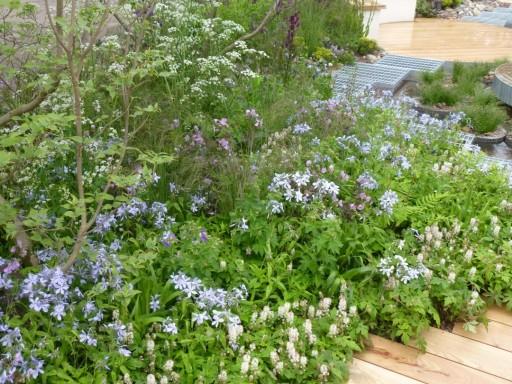 more naturalistic planting