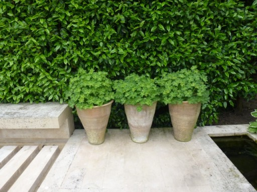 three neatly arranged pots