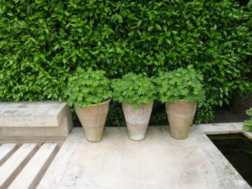 three neatly arranged pots